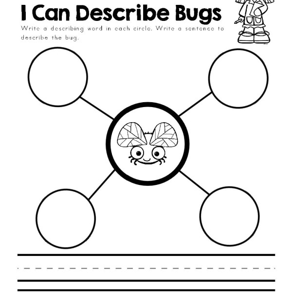 bugs - informational text