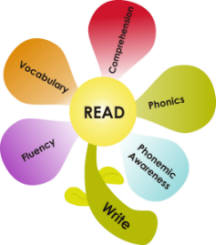 The 5 Essential Components of Reading
