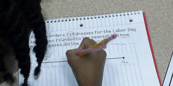 line segment and student