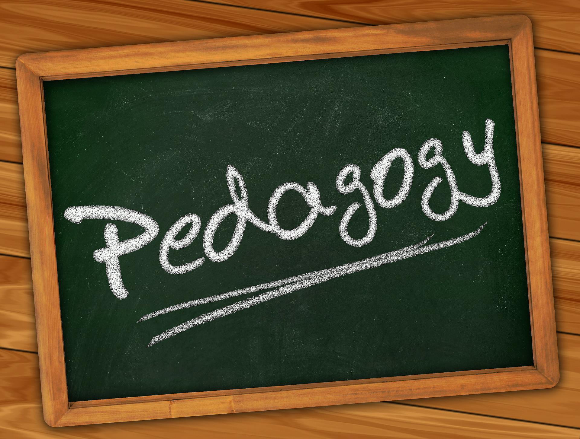 Image result for pedagogy